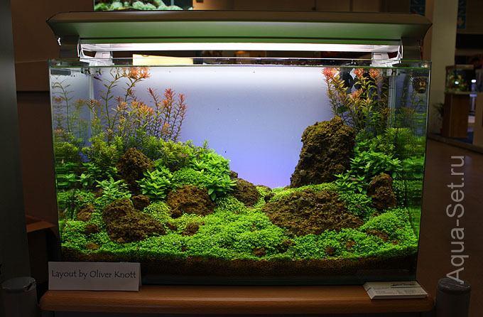 Пошаговый запуск и оформление аквариума от Oliver Knott