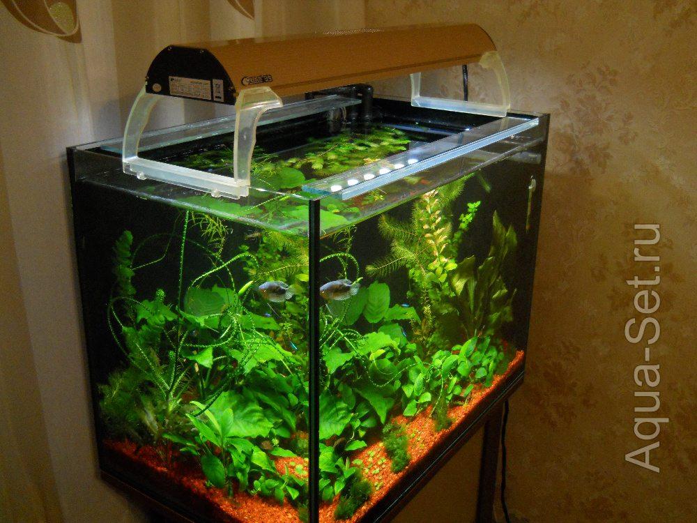 Аквариум освещение для растений своими руками 76