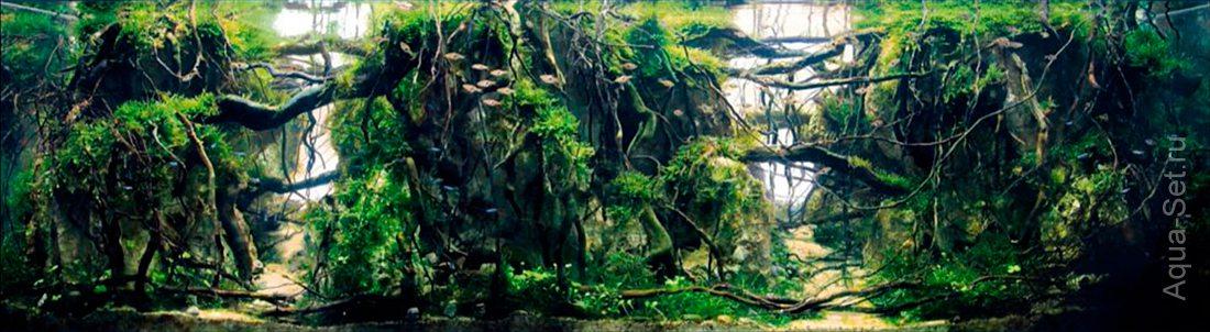 http://www.aqua-set.ru/photo/1457_10.jpg