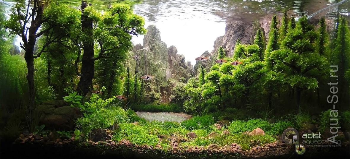 http://www.aqua-set.ru/photo/1457_12.jpg