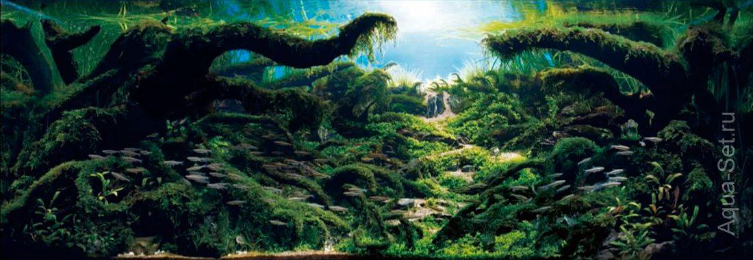 http://www.aqua-set.ru/photo/1457_13.jpg