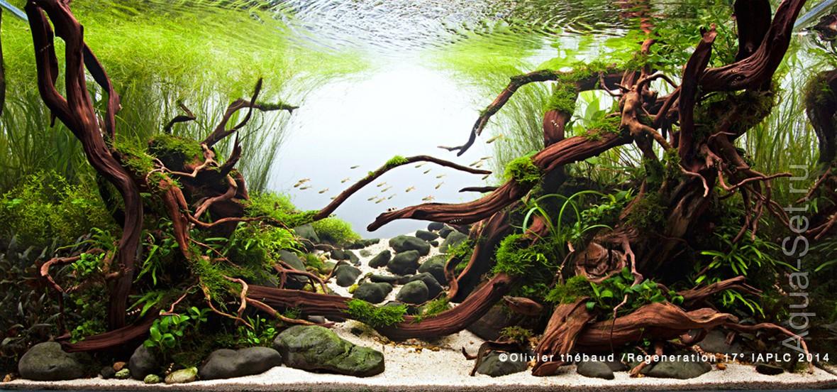 http://www.aqua-set.ru/photo/1457_17.jpg