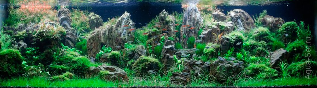 http://www.aqua-set.ru/photo/1457_18.jpg