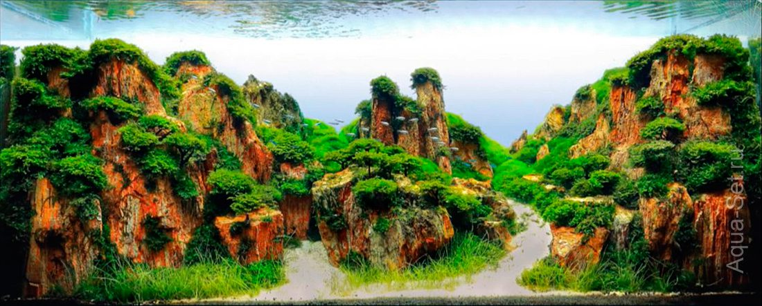http://www.aqua-set.ru/photo/1457_19.jpg