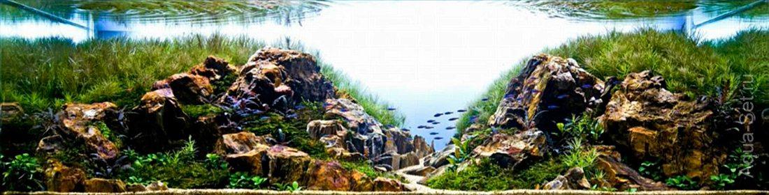 http://www.aqua-set.ru/photo/1457_9.jpg