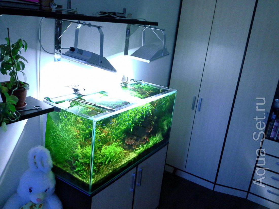 Для выращивания аквариумных растений 433