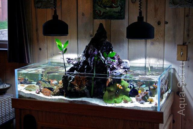 Морской аквариум от Kyle Verry. Часть 1.