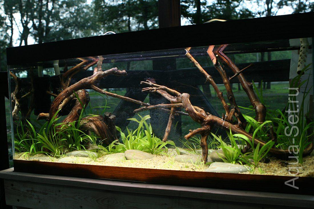 аквариумов фото оформление корягами