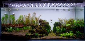Подводный метр