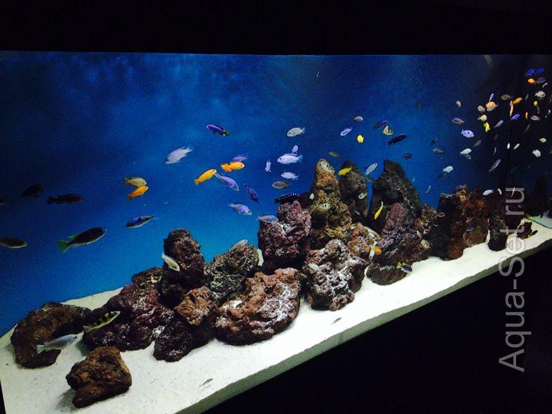 Субстрат для аквариума своими руками