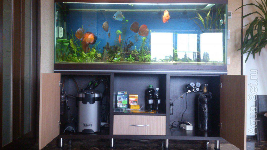Как сделать со2 для аквариума своими руками