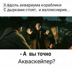 [IMG=2_30]