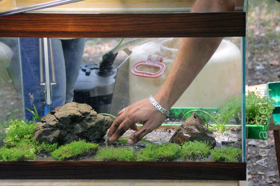 Как в аквариуме сделать грунт