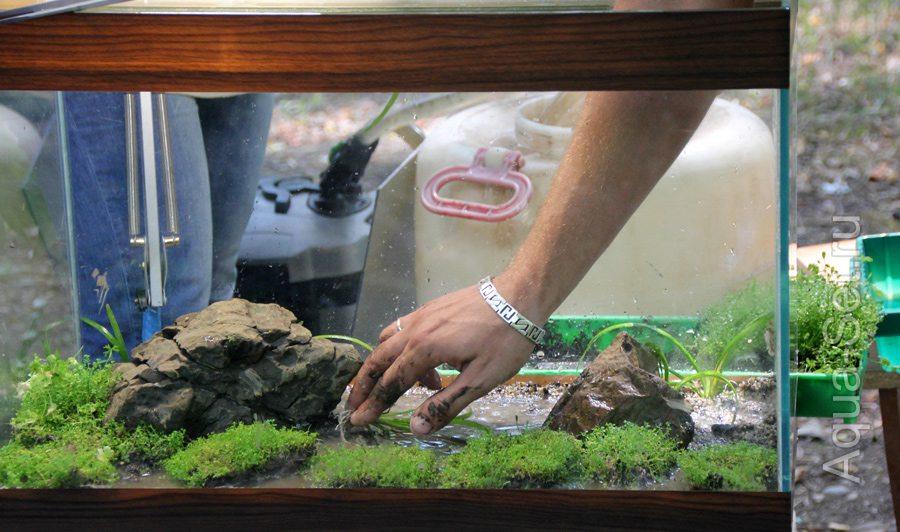 Грунт в аквариуме своими руками